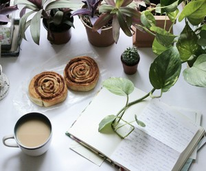 plants, coffee, and food image