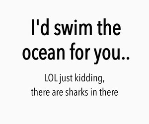 lol, funny, and shark image