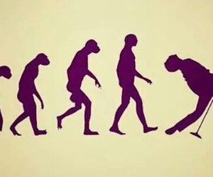 evolution, Freddie Mercury, and Queen image