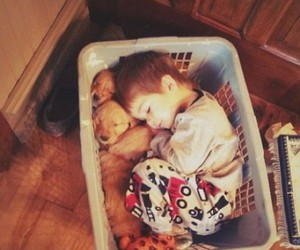 cute, dog, and baby image