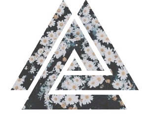 artistic, flowers, and geometric image