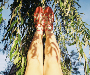 legs and nature image