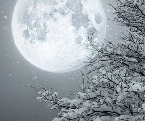 moon, snow, and winter image