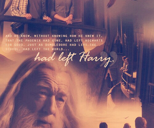 harry potter, book, and dumbledore image
