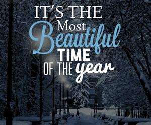 winter, beautiful, and christmas image