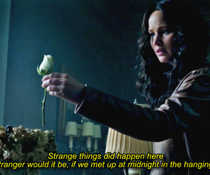 Jennifer Lawrence and the hanging tree image