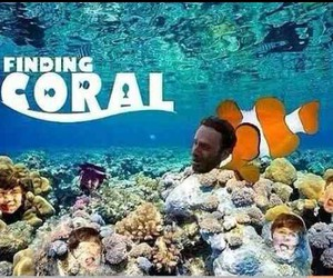 carl, coral, and funny image