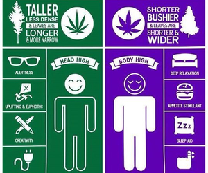 420, difference, and weed image