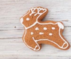biscuit, reindeer, and cookie image
