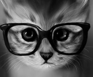 cat, eyes, and hipster image