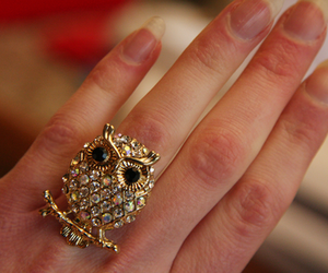 rhinestones, ring, and cute image