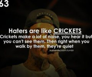 quote, haters, and wiz khalifa image