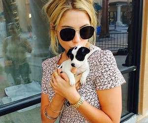 ashley benson, dog, and puppy image