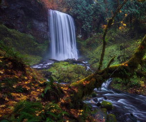 waterfall and autumn? image