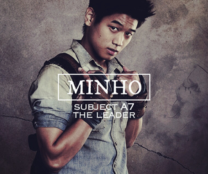 book, Minho, and the maze runner image