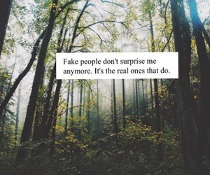 fake, people, and quote image