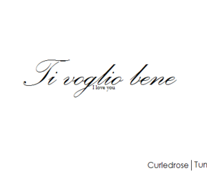 black and white, italian, and text image