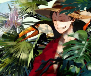holiday, one piece, and rufy image