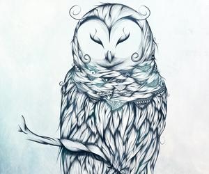 boho, art, and illustration image
