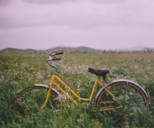 bike, bicycle, and nature image