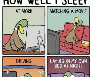 sleep, funny, and duck image