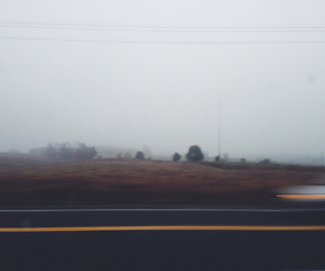 dark, trees, and fog image