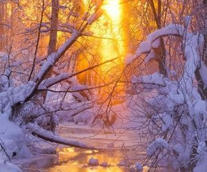 light, scenery, and snow image