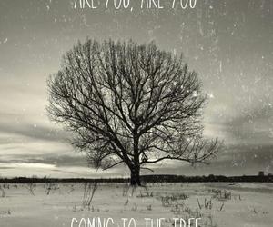 Jennifer Lawrence, tree, and hunger games image