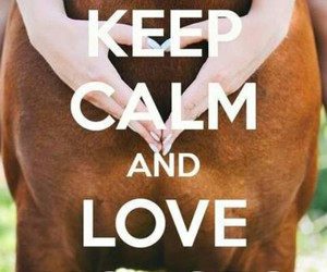 ma vie, horse ♥, and equitation passion image