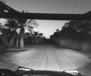 car and palms image