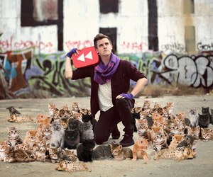 cats, youtuber, and connor franta image