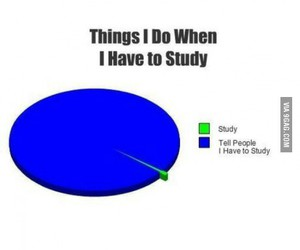 study, funny, and true image
