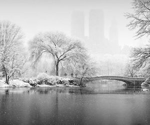 Central Park, winter, and new york image
