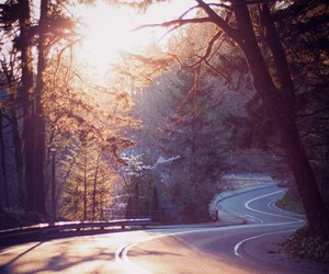 road, nature, and sun image