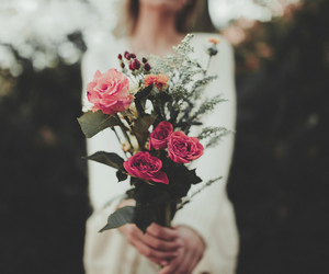 flowers, rose, and photography image