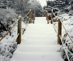paradise, snow, and stairs image