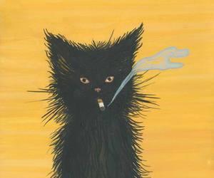 cat, black, and smoke image
