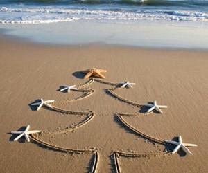 beach, christmas, and sea image