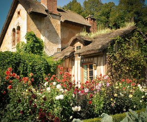 cottage, garden, and house image