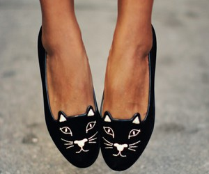 cat, fashion, and shoes image