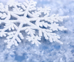 frozen and snow flake image