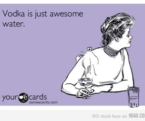 vodka, awesome, and true image