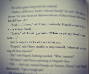 family, harry potter, and hagrid image