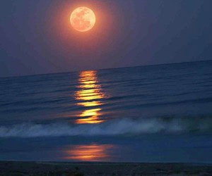 sunset, tumblr, and moon shone on water image