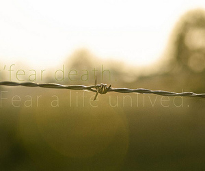 adventure, Barbed Wire, and beautiful image