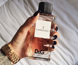 perfume, D&G, and nails image
