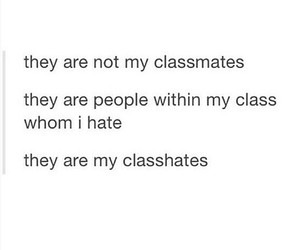 class, classmates, and funny image