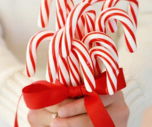 candy, christmas, and candy cane image