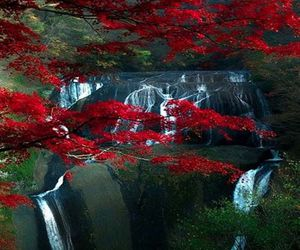 view of nature in japan image
