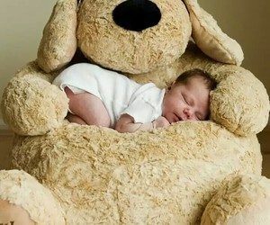 baby, teddy bear, and lovely image